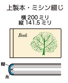 200_141.5mishin
